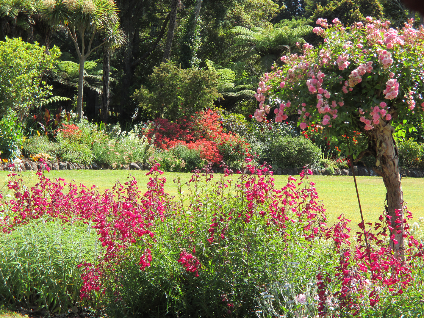 garden wedding venue kerikeri bay of islands
